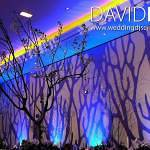 Branch Image Projection Manchester Radisson Blu Edwardian